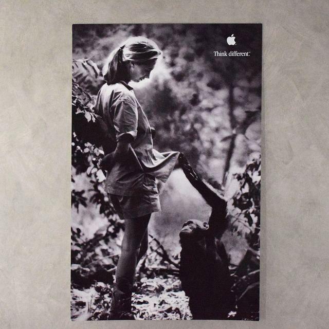 """画像1: 90's Apple Think different Poster """"Jane Goodall"""" DEADSTOCK (1)"""